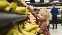 PRESSEMEDDELELSE Nu bliver alle bananer i foetex Netto og Bilka oekologiske