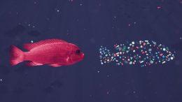 PRESSEMEDDELELSE Mission ny kampagne skal informere om det usynlige plastikproblem med mikroplastik